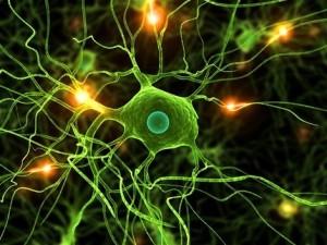 17588-narkoza-anesteza-vedomie-umely-spanok-mozog-bunka-clanok