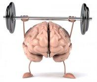 resized__450x380_Brain_Health