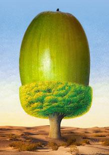 muz-ktory-sadil-stromy