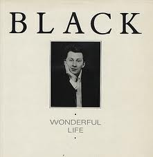 black-wonderful-life